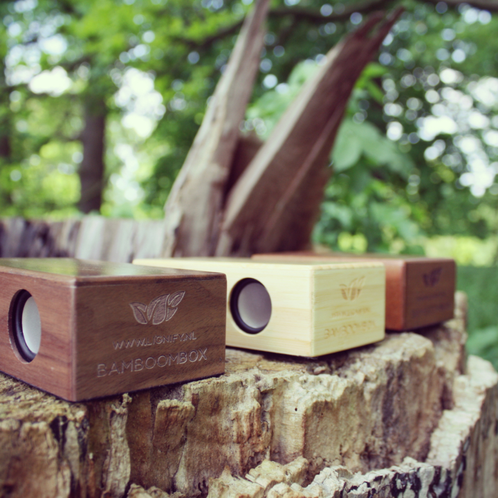Houten inductie speaker BamBoomBox multiple types